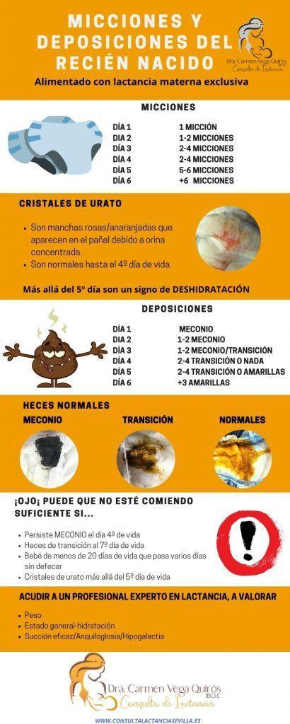 micciones y deposiciones del recién nacido